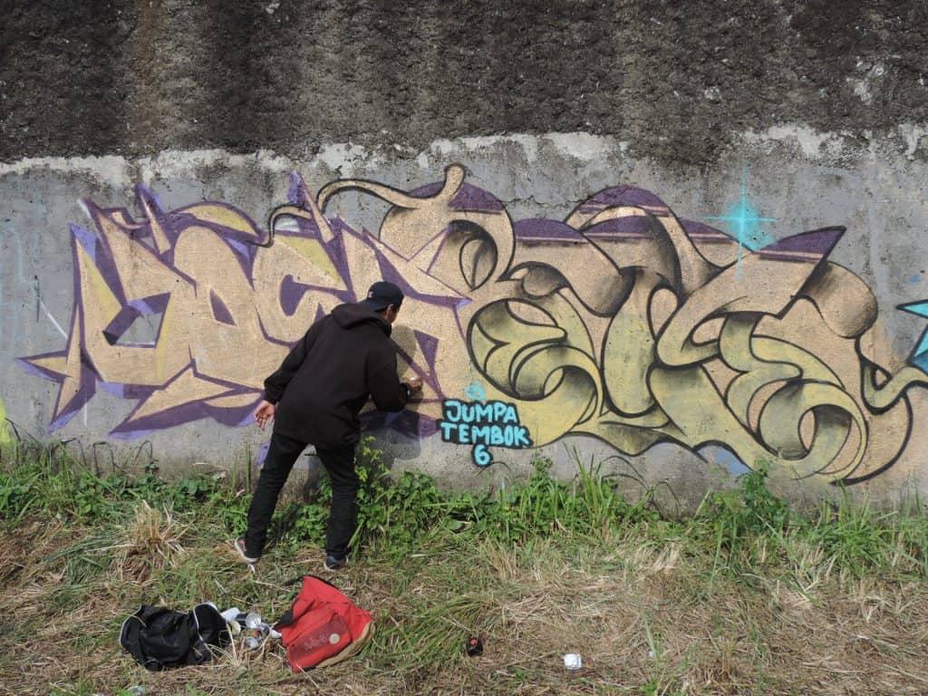 cat tembok - dscn1404