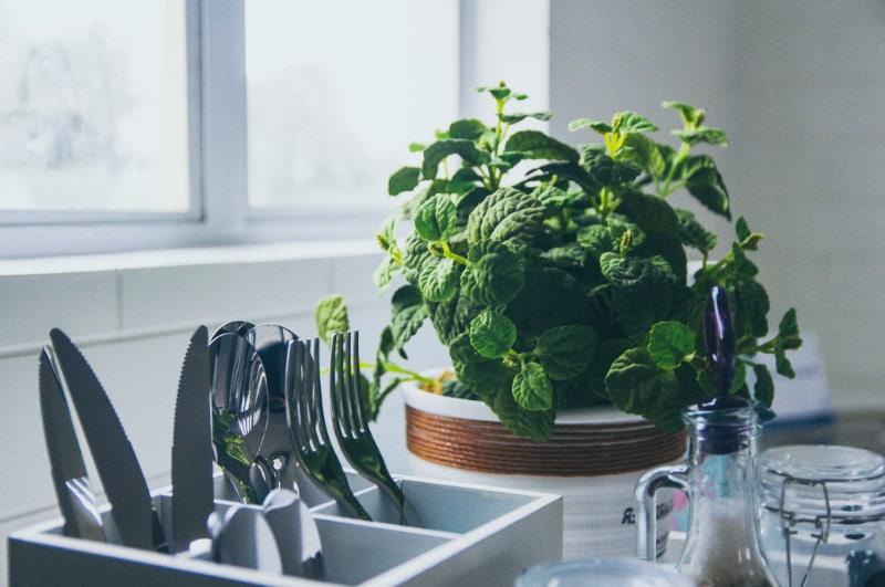 Segarkan Dapur dengan Tanaman di Jendela