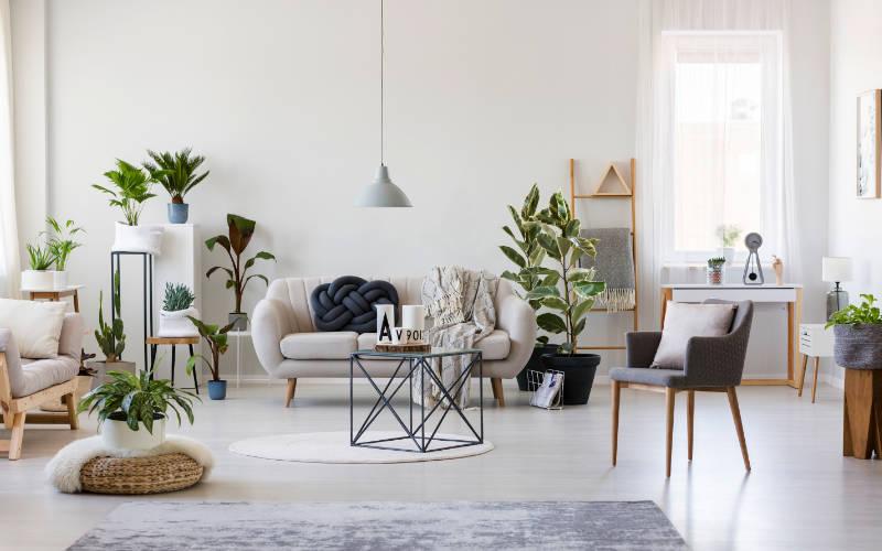 trend rumah dengan tanaman
